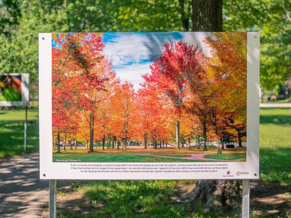 Panel : Lorraine park in all the fall's vivid colours.28mm ISO500 1/500sec f/7.1, KW:  Lorraine