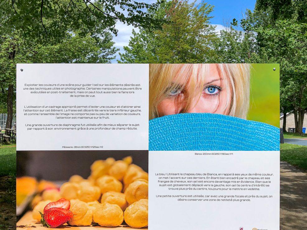 L'utilisation de la couleur pour attirer l'attention sur des parties d'images.   Panneau exposition en plein air au parc Lorraine