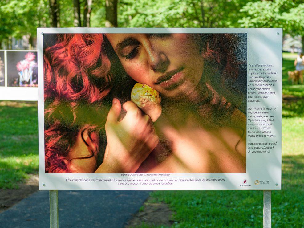 Séance studio avec  Léolane Kemler (auteure) et un grnad python royal.   Panneau exposition en plein air au parc Lorraine, KW:  Lorraine