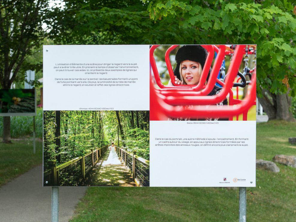 exposition ville Lorraine champignons arbre forêt